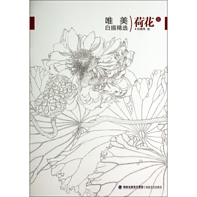 《荷花(3)/唯美白描精选》绘画:刘德伟