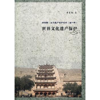 新视野丛书--世界文化遗产保护