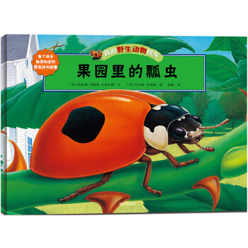 果园里的瓢虫-我的野生动物朋友