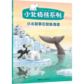 小北极熊在鲸鱼海湾