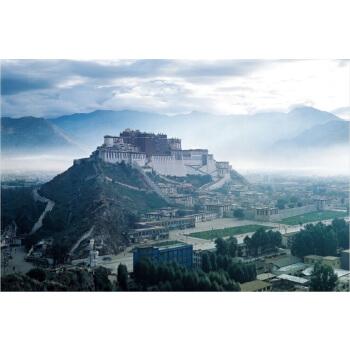 成人1000片木质拼图500片西藏风景世界著名