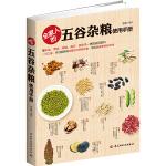 全家人的五谷杂粮使用手册(手把手教您制作中医食疗方,帮您轻松调理五脏、强身健体。)