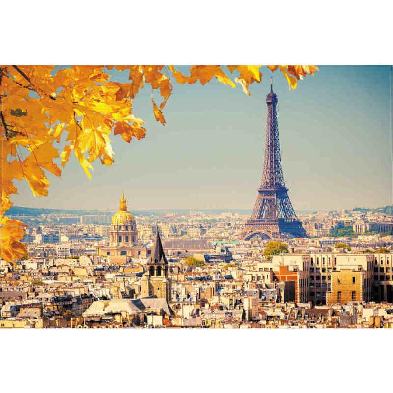 光唯美风景建筑埃菲尔铁塔