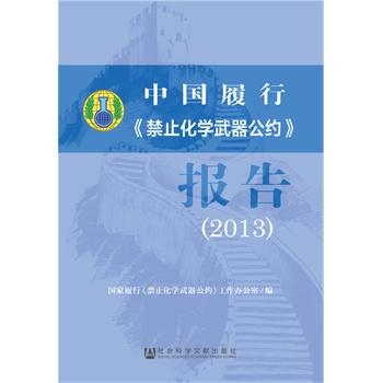 2013-中国履行<<禁止化学武器公约>>报告